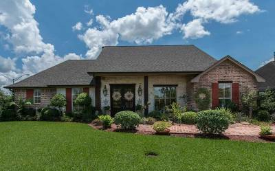 Beaumont Single Family Home For Sale: 2290 Turningleaf Dr