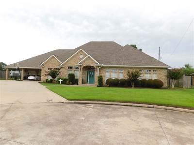 Nederland Single Family Home For Sale: 803 Hunter Ridge