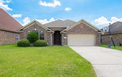 Beaumont Single Family Home For Sale: 5690 Nicole