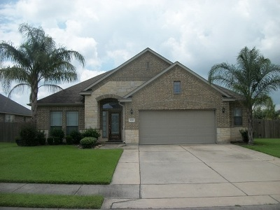 Nederland Single Family Home For Sale: 8300 Lake Powell Dr