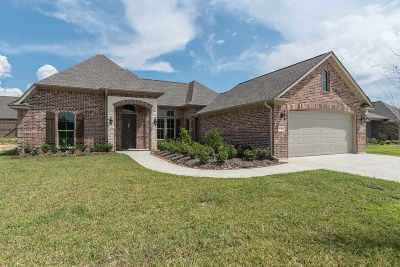 Lumberton Single Family Home For Sale: 233 Spring Brook Court