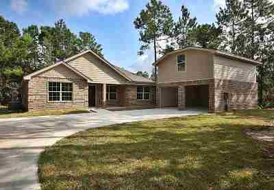 Lumberton Single Family Home For Sale: 6625 Palace Dr.