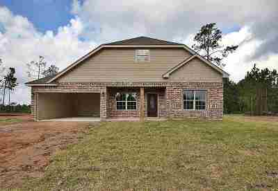 Lumberton Single Family Home For Sale: 6720 Palace Dr.