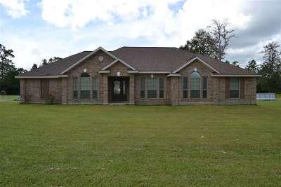 Kountze Single Family Home For Sale: 4535 Fm 1003 N