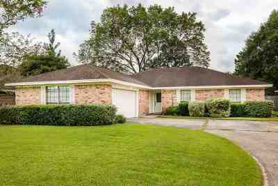 Beaumont Single Family Home For Sale: 4575 Reagan Street