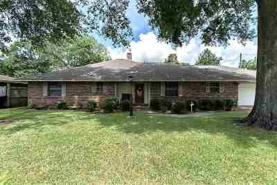 Nederland Single Family Home For Sale: 2808 Erwin Street