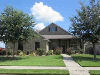 Nederland Single Family Home For Sale: 7605 Superior Dr