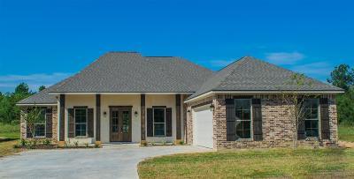 Lumberton Single Family Home For Sale: 1245 Kala Cir
