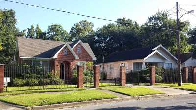 Beaumont Multi Family Home For Sale: 2560 McFaddin