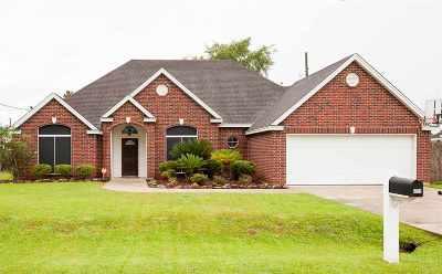 Lumberton Single Family Home For Sale: 6555 Boone Ln.