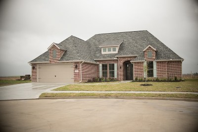 Beaumont Single Family Home For Sale: 3520 Abby Lane