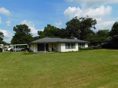 Nederland Single Family Home For Sale: 2424 Avenue G