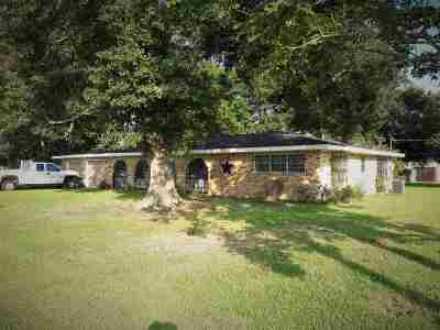 Nederland Single Family Home For Sale: 1717 Canal Ave