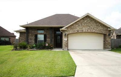Nederland Single Family Home For Sale: 112 Woodridge Drive