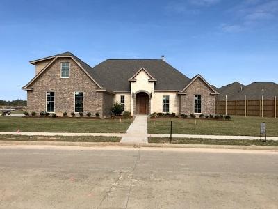 Lumberton Single Family Home For Sale: 423 River Birch Drive