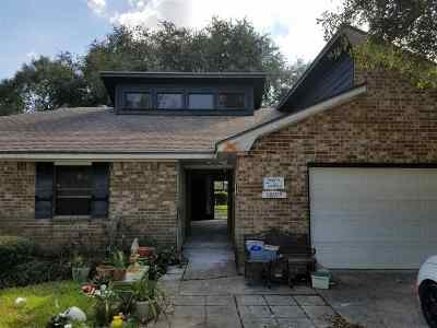 Beaumont Single Family Home For Sale: 12865 Birch Ln