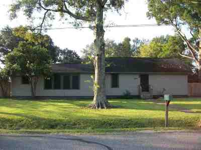 Beaumont Single Family Home For Sale: 9075 Riggs St