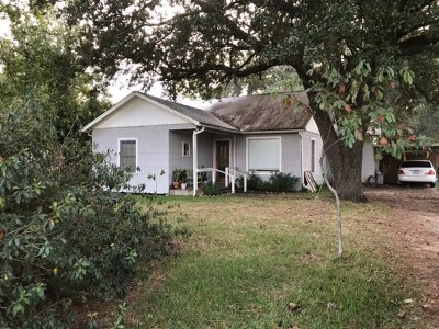 Vidor Single Family Home For Sale: 350 Sargent