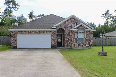Vidor Single Family Home For Sale: 299 Nagel St.