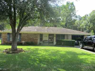 Vidor Single Family Home For Sale: 355 Palmetta