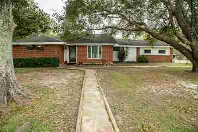 Beaumont Single Family Home For Sale: 16923 Fm 365