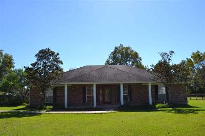 Beaumont Single Family Home For Sale: 753 Humble Camp Road