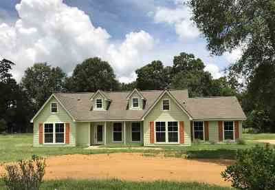 Vidor Single Family Home For Sale: 3157 Stanley Drive