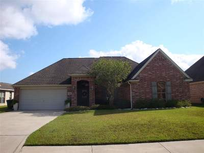 Beaumont Single Family Home For Sale: 3660 Grayson Lane