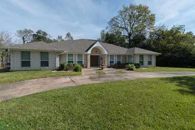 Beaumont Single Family Home For Sale: 197 E Caldwood Drive