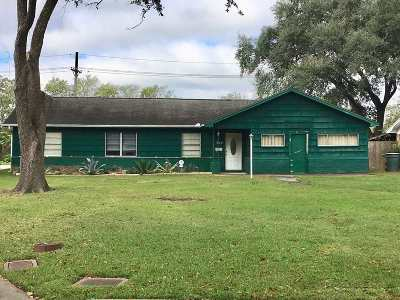 Beaumont Single Family Home For Sale: 260 W Caldwood