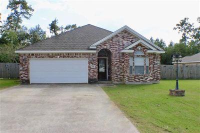Vidor Single Family Home For Sale: 299 Nagel Street