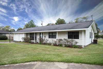 Beaumont Single Family Home For Sale: 5010 Swallow Dr