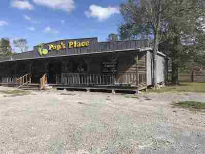Vidor Commercial For Sale: 4795 N Main