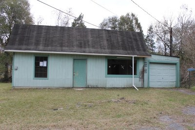 Vidor Single Family Home For Sale: 905 & 915 S Dewitt