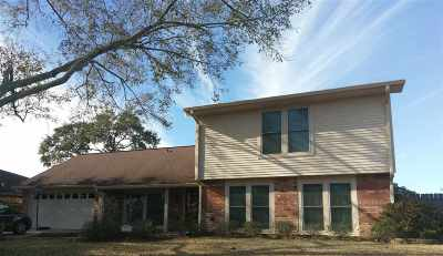 Beaumont Single Family Home For Sale: 975 Monterrey
