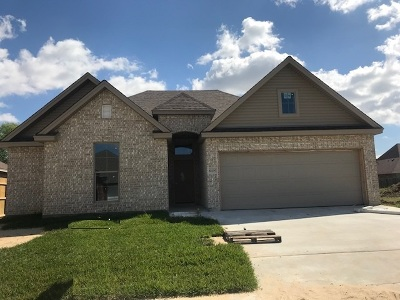 Port Arthur Single Family Home For Sale: 10200 Shady Ranch
