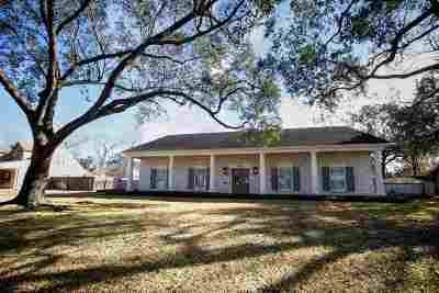 Beaumont Single Family Home For Sale: 1550 Continental St