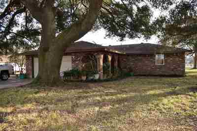 Beaumont Single Family Home For Sale: 19527 Fm 365