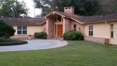 Beaumont Single Family Home For Sale: 580 N Major Drive