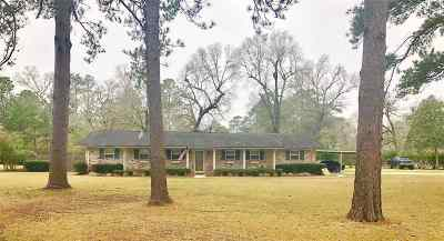 Beaumont Single Family Home For Sale: 13325 Capital Drive
