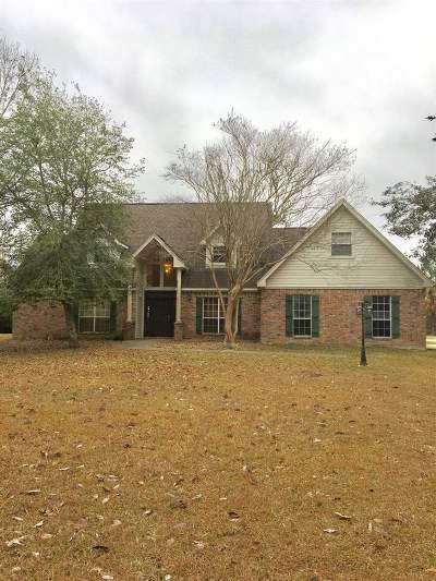 Lumberton Single Family Home For Sale: 4715 Stag Ln
