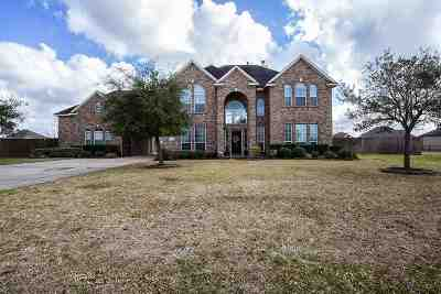 Beaumont Single Family Home For Sale: 14855 Lisa Lane