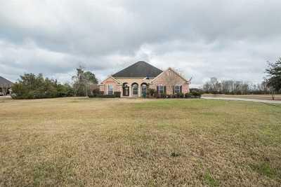 Beaumont Single Family Home For Sale: 8495 Anastasia Avenue