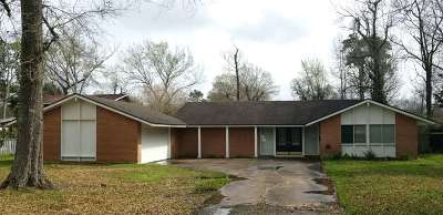 Beaumont Single Family Home For Sale: 555 Munsterman Pl