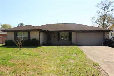Beaumont Single Family Home For Sale: 4325 Folsom Dr