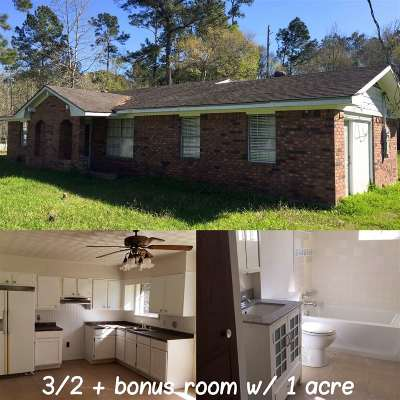 Vidor Single Family Home For Sale: 310 Greathouse