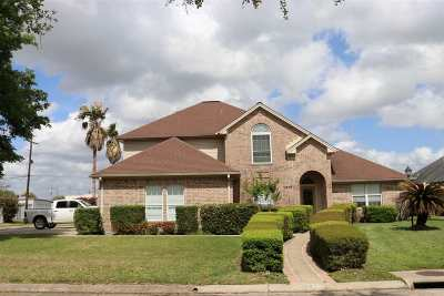 Nederland Single Family Home For Sale: 1415 Arbor Court