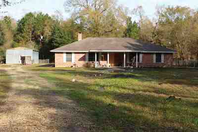 Beaumont Single Family Home For Sale: 9602 Tram Road