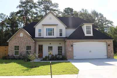 Lumberton Single Family Home For Sale: 8215 Royal Oaks Dr.