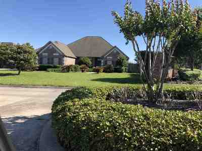 Beaumont Single Family Home For Sale: 8065 Village